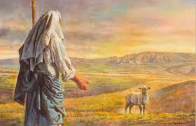Hän on meidän   syntiemme sovitus Lammas11