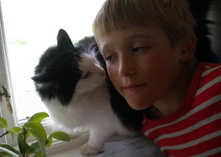 silitettäis sanoilla, niinkuin kissaa silitetään Thumbn10