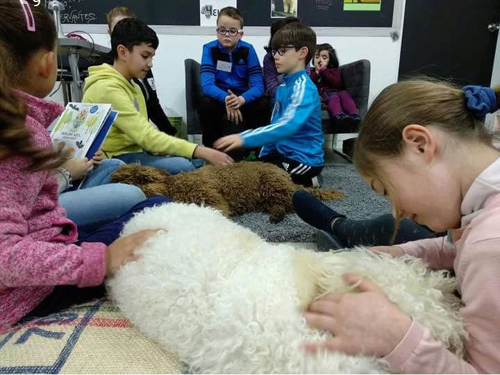 Taller de lectura con perros 2 de Marzo 20180313