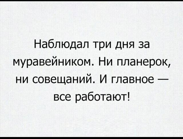 Поюморим? Смех продлевает жизнь) - Страница 13 Tfdliu10
