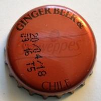 REFRESCOS-013-SCHWEPPES GINGER BEER & CHILE Dscn0515