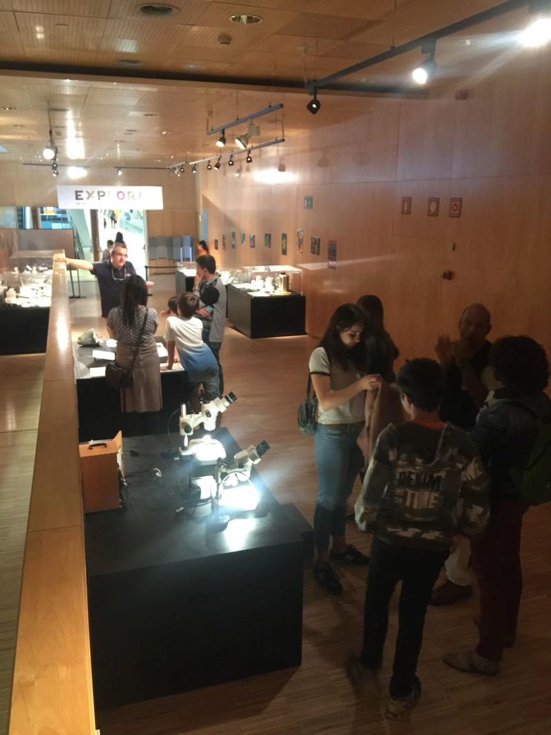 minerals - Exposició Cosmocaixa Barcelona- Explora: el col·leccionisme de minerals. 16-img10