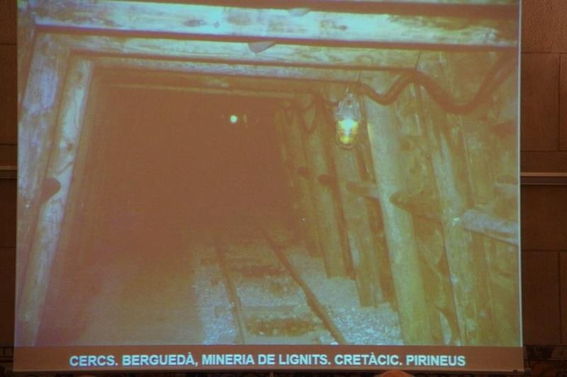 """Crònica de la conferència """"Mineria i Patrimoni miner Català Inventari i avaluació de museus i parcs geològics."""". 414"""