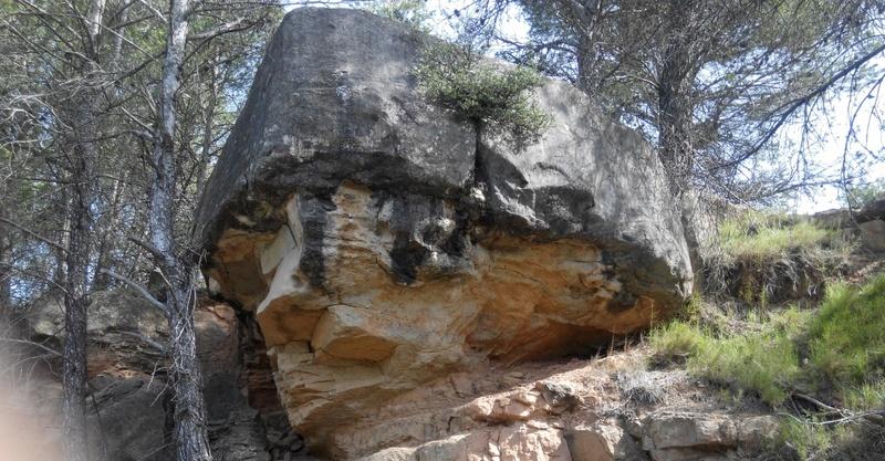 Excursió geològica amb el professor Mata Perelló 415