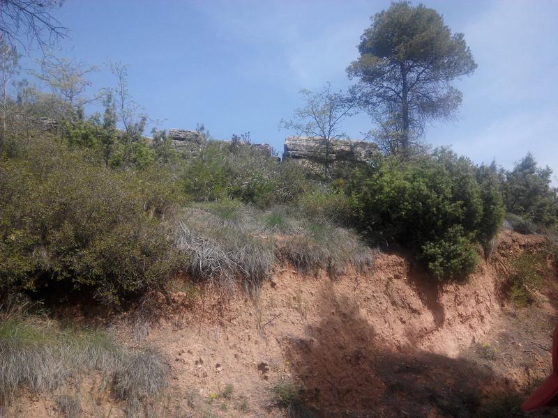 Excursió geològica amb el professor Mata Perelló 515