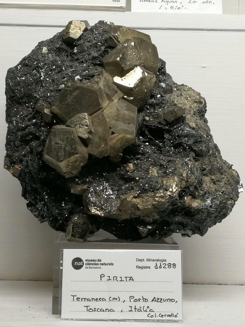 Crònica de la conferència: Formes actuals de documentació, catalogació i conservació preventiva de les col•leccions de mineralogia i petrologia al Museu de Ciències Naturals de Barcelona 611