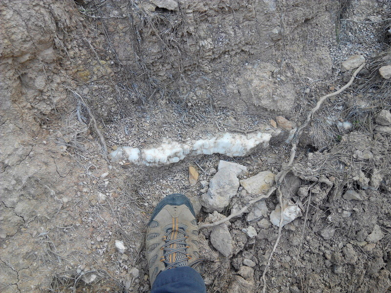 perello - Excursió geològica amb el professor Mata Perelló 713