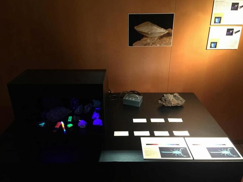 minerals - Exposició Cosmocaixa Barcelona- Explora: el col·leccionisme de minerals. 8-225510