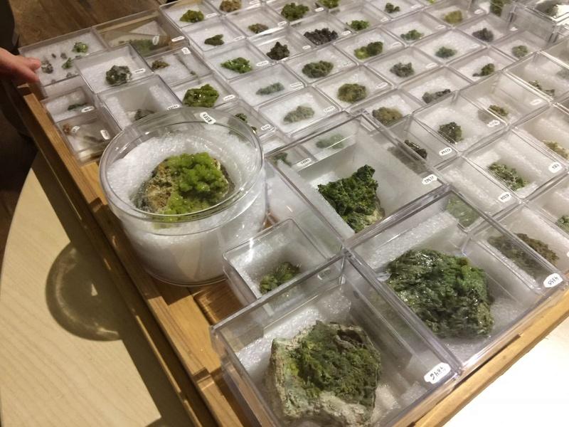 Crònica de la conferència: Formes actuals de documentació, catalogació i conservació preventiva de les col•leccions de mineralogia i petrologia al Museu de Ciències Naturals de Barcelona 911