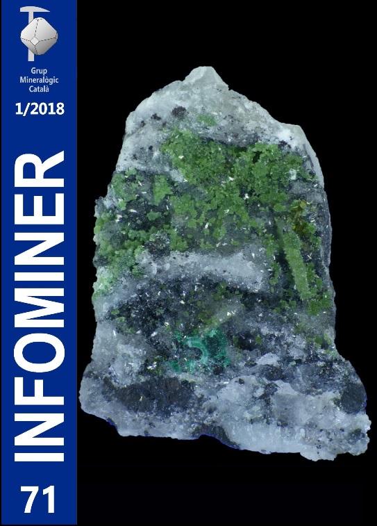 Infominer nº 71 (1/2018) Infomi11