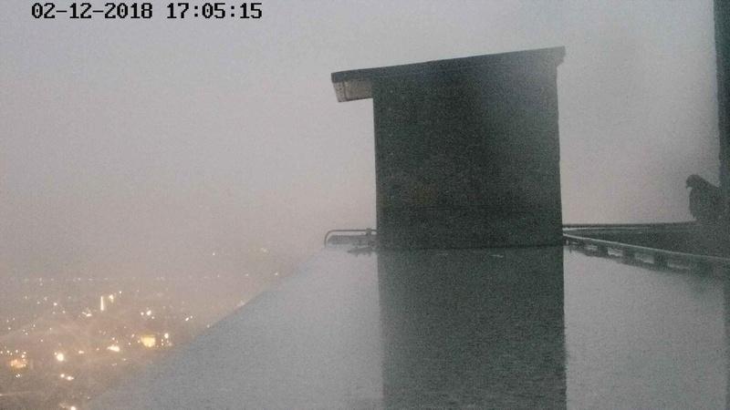 Tilburg Til ~ Borg. 212t110