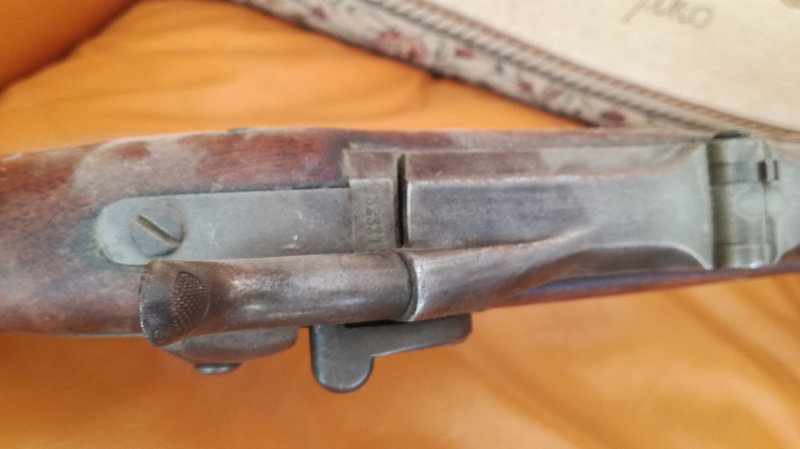Remington Rolling Block en 17.5 mm ? Img_2058
