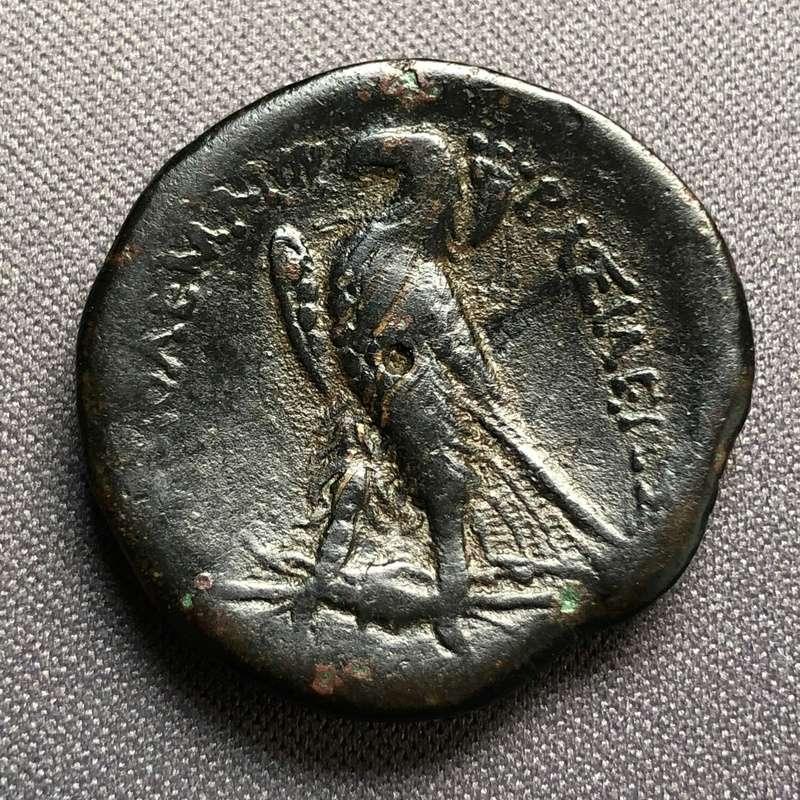 Bronce de Ptolomeo II. Alejandría, Egipto. Bab01710