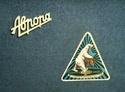 Электропатефоны - Страница 2 Awrora18