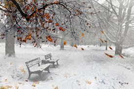 Mùa đông (thơ ĐL dp) 0116