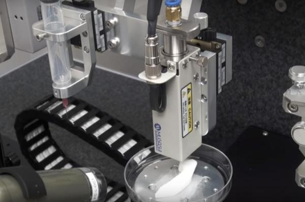 Órganos impresos en 3D, el futuro de los trasplantes New-3d10