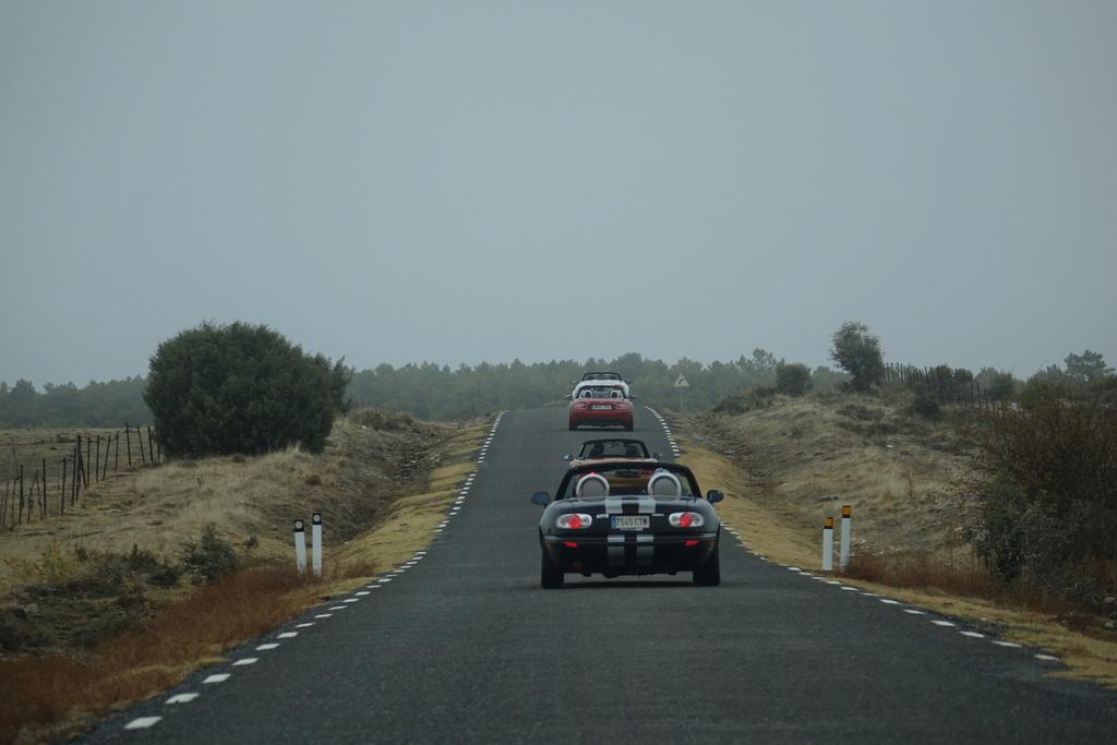 4 Noviembre, ruta otoñal por Ávila - Página 4 Dsc08521