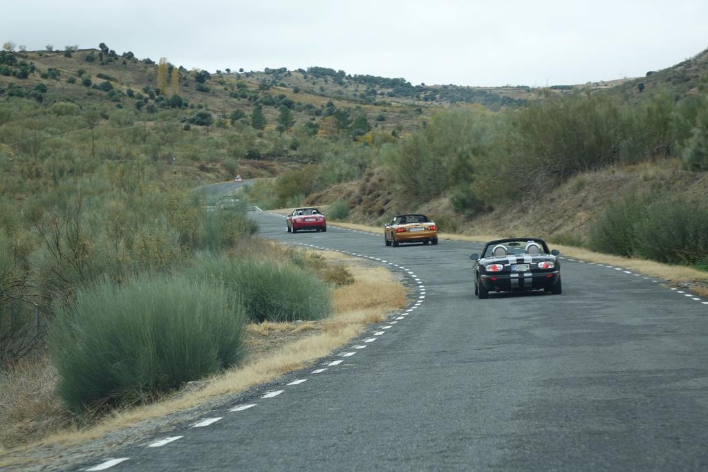 4 Noviembre, ruta otoñal por Ávila - Página 4 Dsc08525