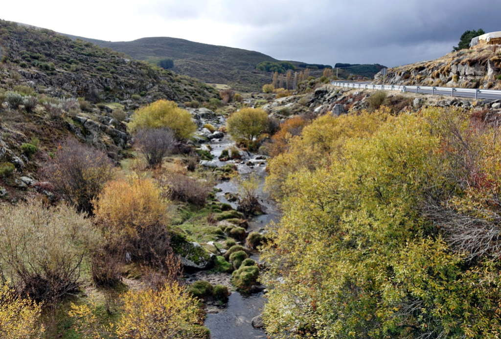 4 Noviembre, ruta otoñal por Ávila - Página 4 Dsc08527