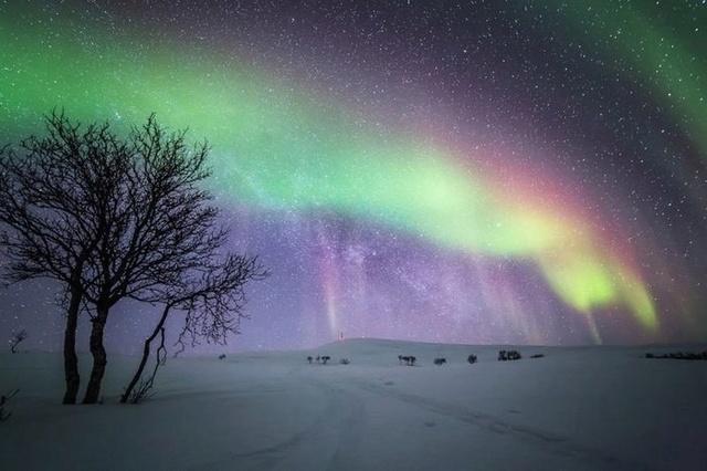 Звёздное небо и космос в картинках - Страница 3 15235910