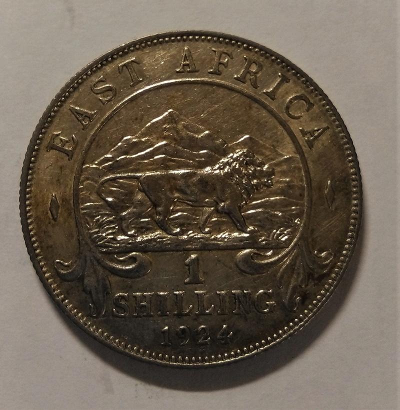 ÁFRICA DEL ESTE BRITÁNICA - Un Chelín, 1924 - Jorge V Img_2175