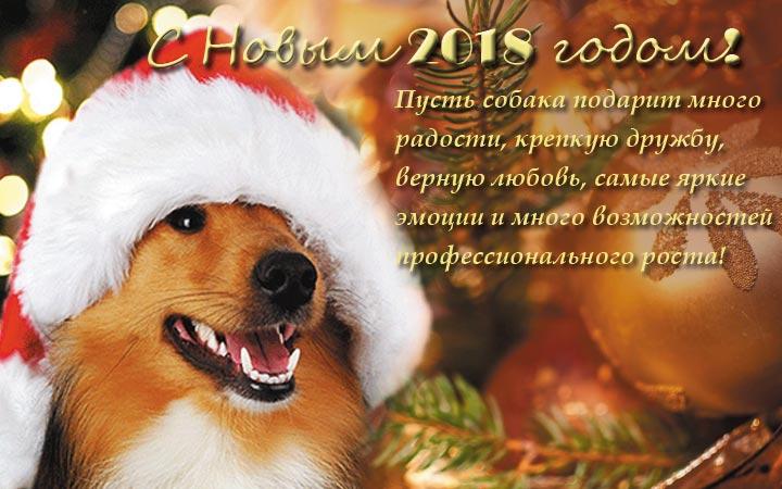 Новогодние поздравления форумчан - Страница 2 4410