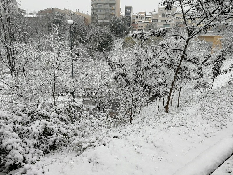 puta nieve - Página 5 Img_2020