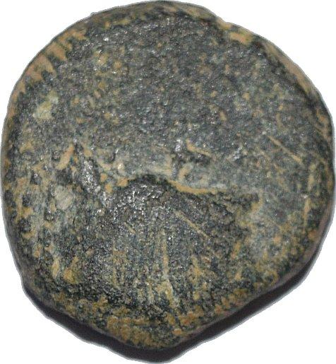 AE15 de Aretas II ó III. Petra. (Reino de los Nabateos) 36510