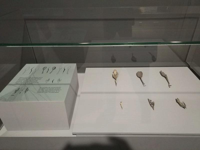 Visita Museo ARQUA (SALA PECIO NUESTRA SEÑORA DE LAS MERCEDES) Photo-24