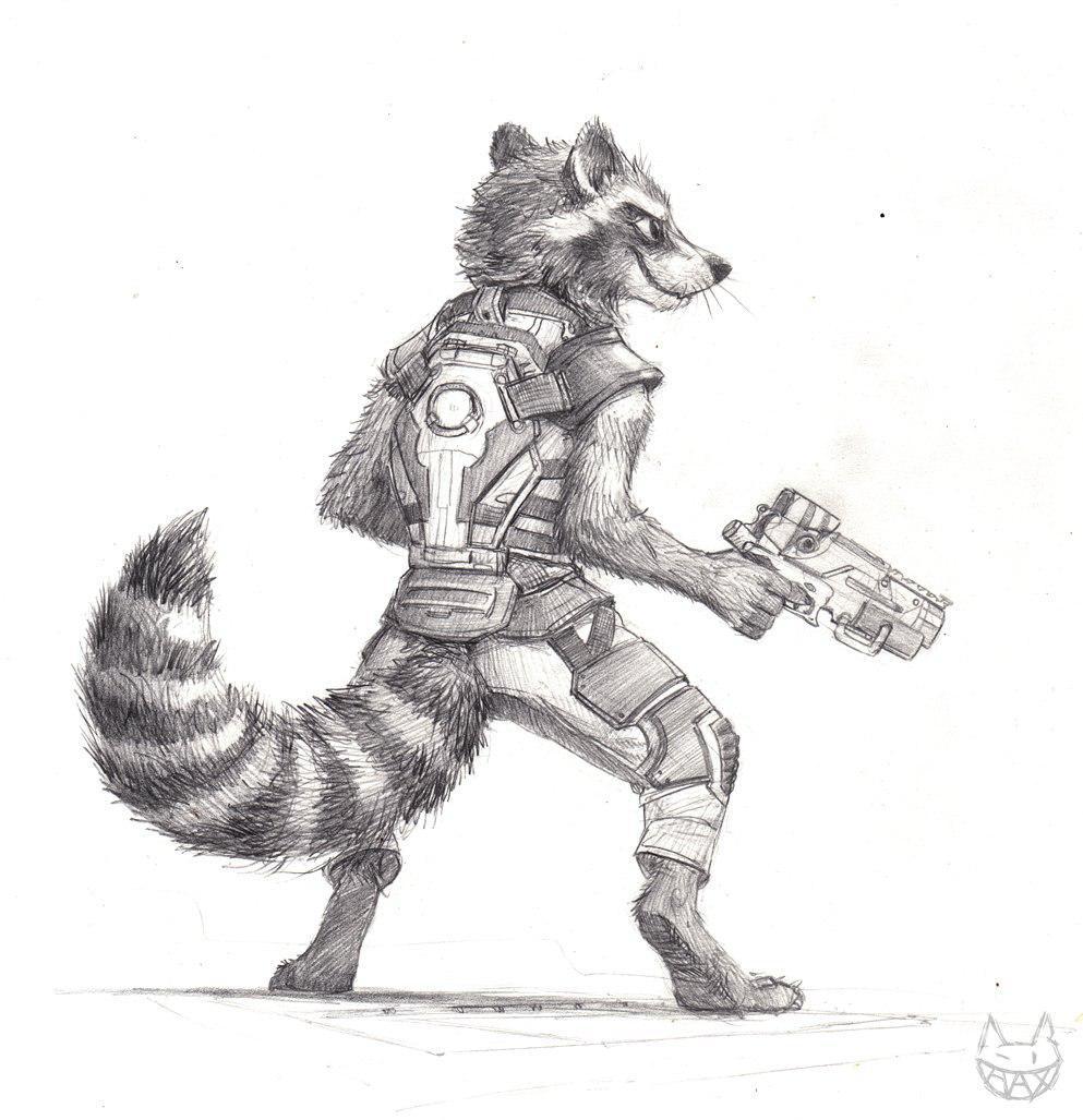 Gadget Raccoon, Constelación de la Familia Photo_26