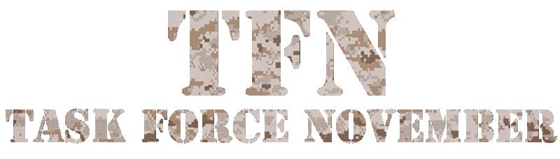 TFN ( TASK FORCE NOVEMBER)