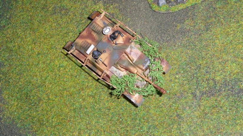 """Kommissars 116. Panzerdivision """"Windhund"""" Dsc00311"""
