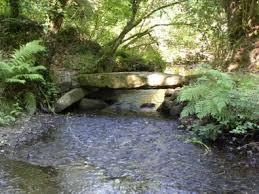 09_09 : Course nature des 2 rivières à Bégard 09 septembre 2018 Images10