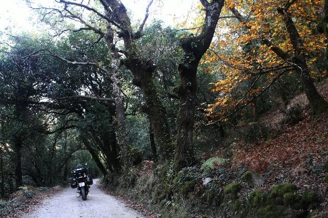 Outono no Gerês Img_1115