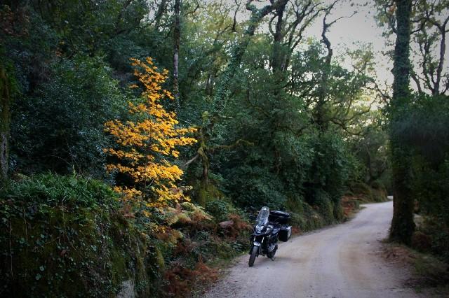 Outono no Gerês Img_1118