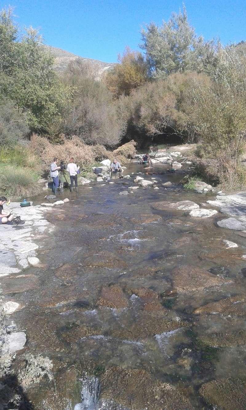 Bateo de oro en el rio Genil, Cenes de la Vega (Granada) - Página 2 358b6f10