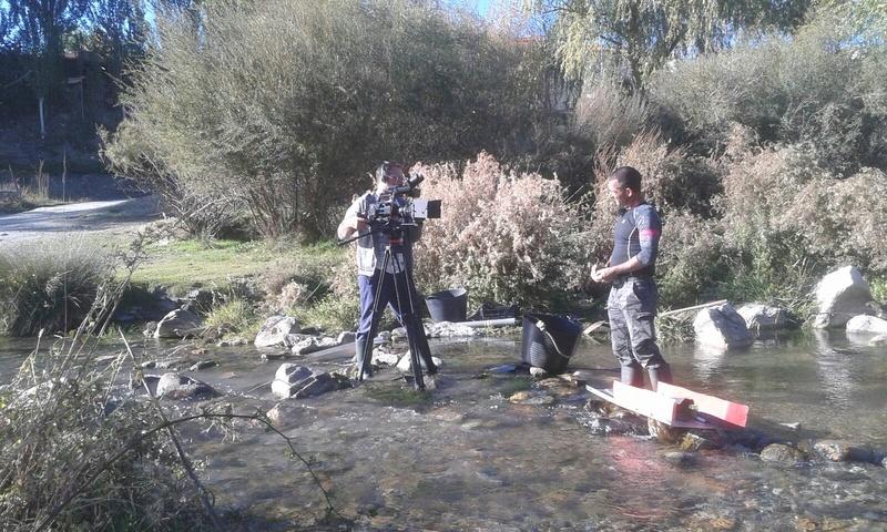 Bateo de oro en el rio Genil, Cenes de la Vega (Granada) - Página 2 692b4010