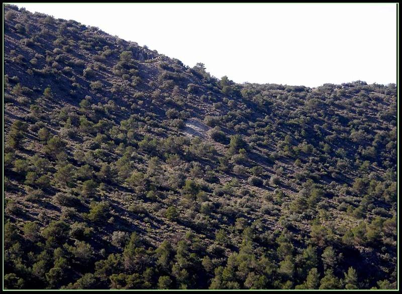 MINA JUAN DEL AMO, LUCAR (Almería) Amo00110