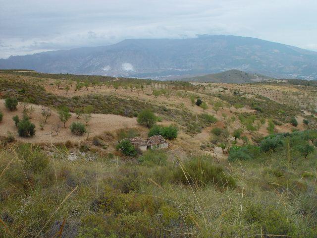 MINAS DEL CORTIJO DE LOS LASTONARES, ALBUÑUELAS (GRANADA) Dsc08810