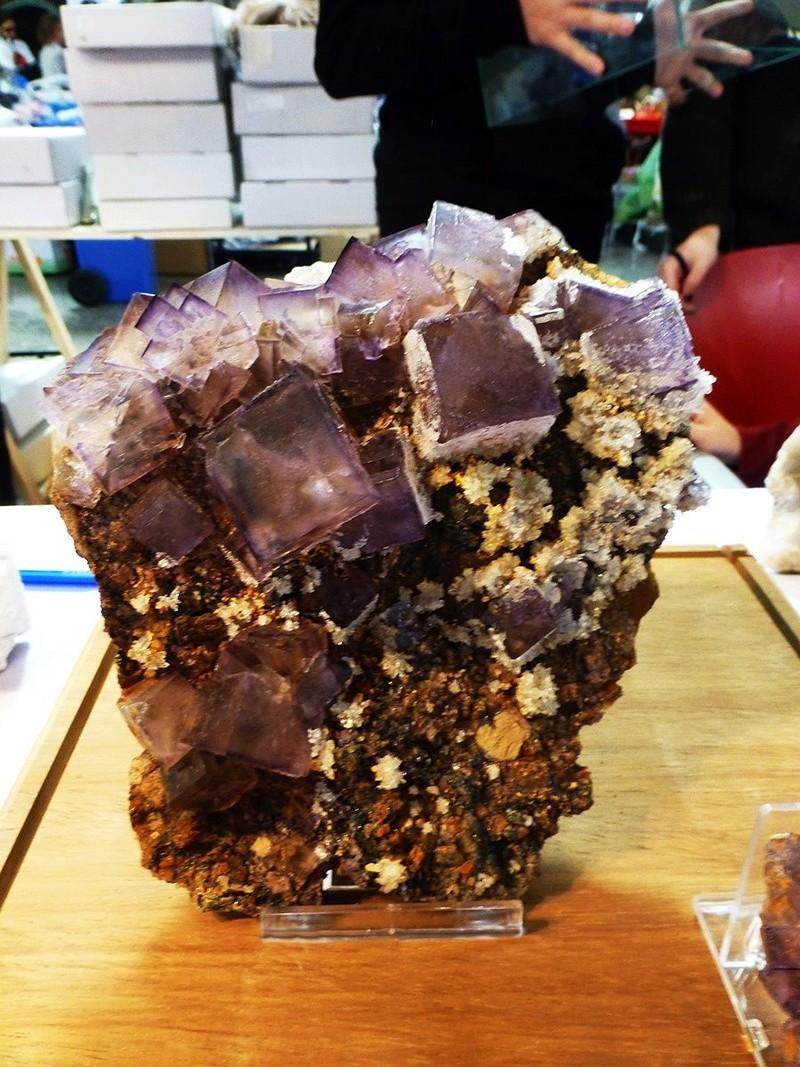 XXII Feria de Minerales y Fósiles de La Unión - 2018 F31ab011