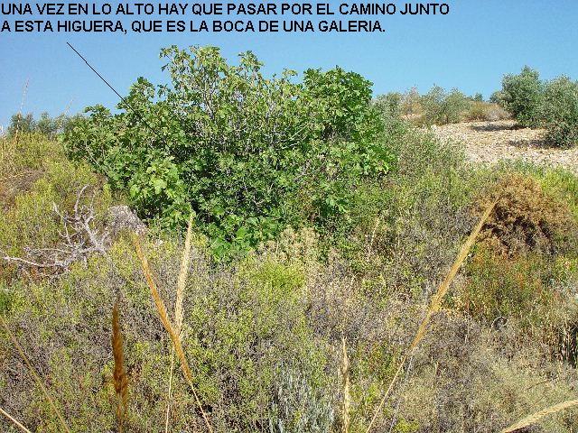 MINAS DEL CORTIJO DE LOS LASTONARES, ALBUÑUELAS (GRANADA) Laston10