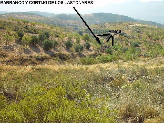 MINAS DEL CORTIJO DE LOS LASTONARES, ALBUÑUELAS (GRANADA) Laston13