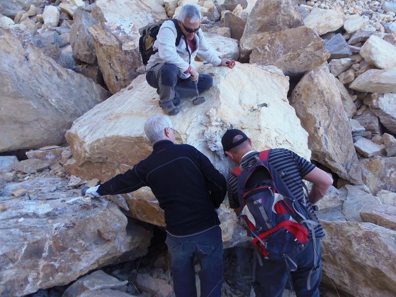 CANTERAS DE MACAEL, MACAEL (Almería) P2180014