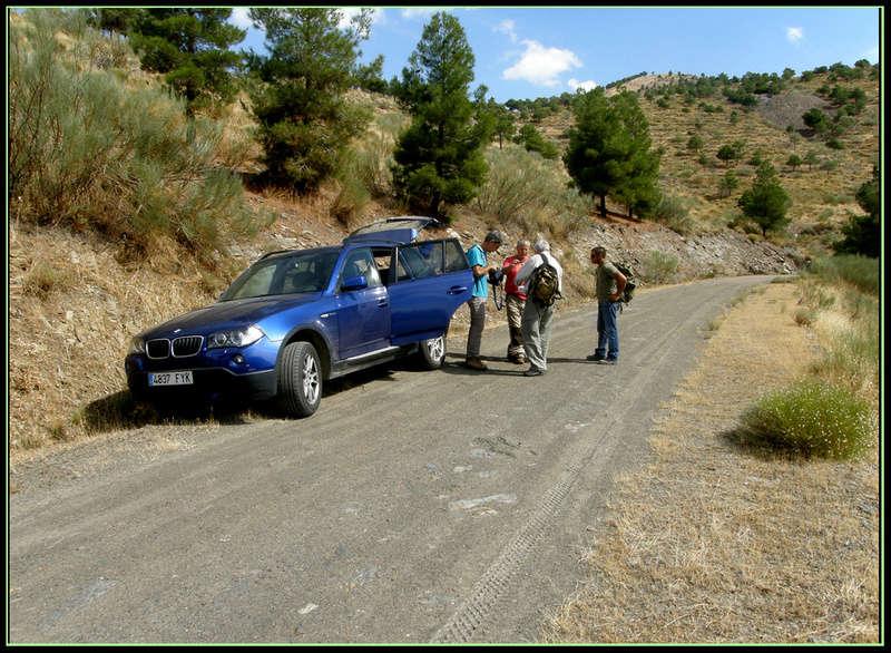 MINAS DEL BARRANCO DEL GALLO, FIÑANA (Almería) P9140810