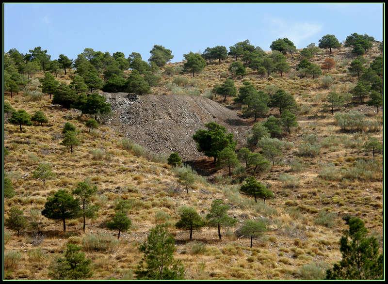 MINAS DEL BARRANCO DEL GALLO, FIÑANA (Almería) P9140812