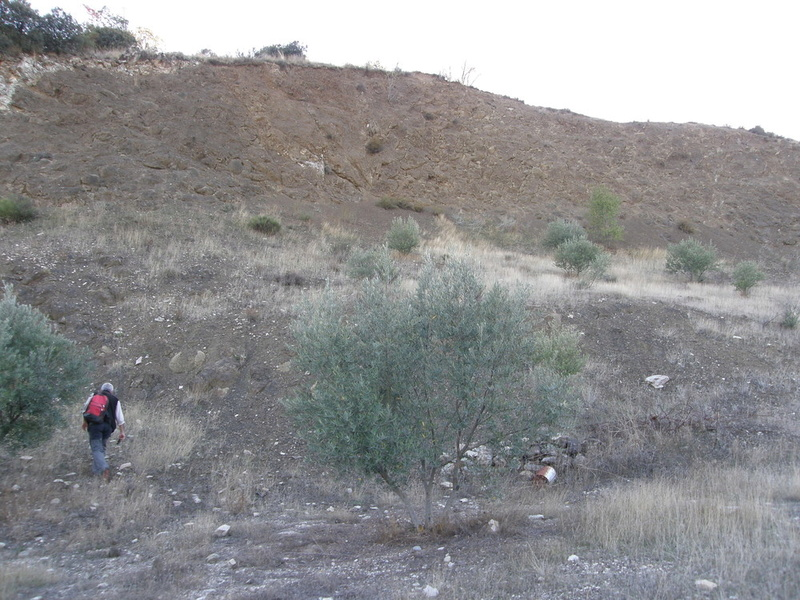 PUERTO CARRETERO, IZNALLOZ (GRANADA) Pb021212