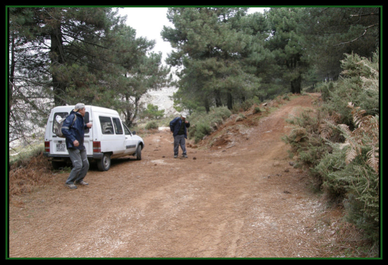 MINAS DEL ROBLEDAL – IGUALEJA (Málaga)  LUDWIGITA/LUDWIGITE Rob410