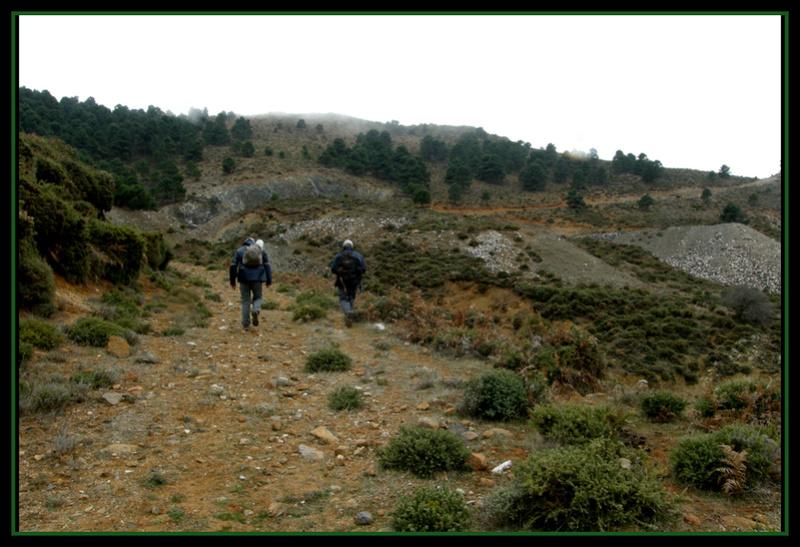 MINAS DEL ROBLEDAL – IGUALEJA (Málaga)  LUDWIGITA/LUDWIGITE Rob710