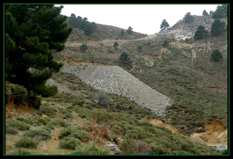 MINAS DEL ROBLEDAL – IGUALEJA (Málaga)  LUDWIGITA/LUDWIGITE Rob812