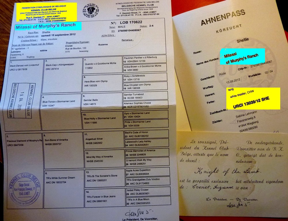Aspects administratifs et standards. Pedigr12